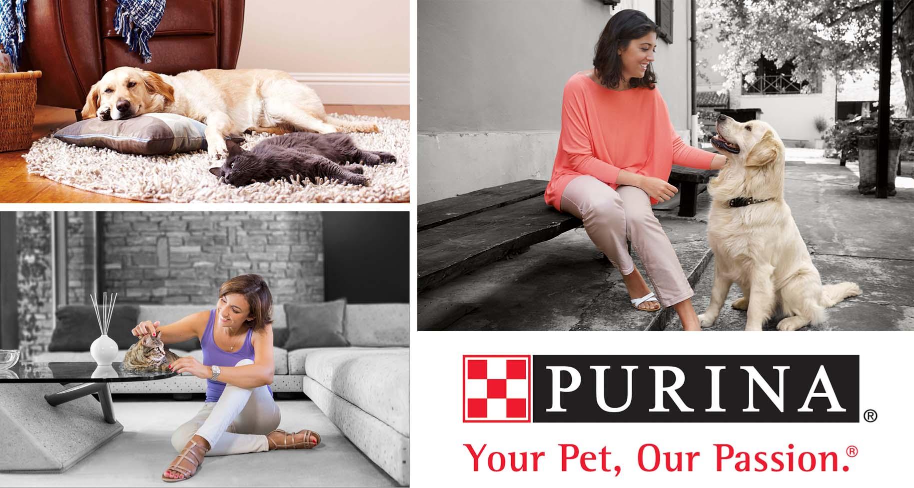 purina-sponsorship