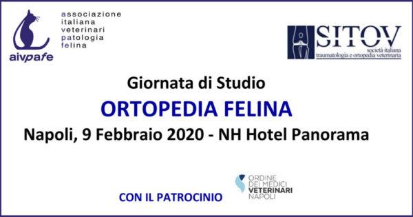 AIVPAfe - Giornata di studio - 9 Febbraio 2020 - Napoli