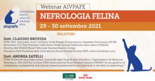 NEFROLOGIA.indd